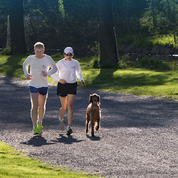 Couple running with their dog